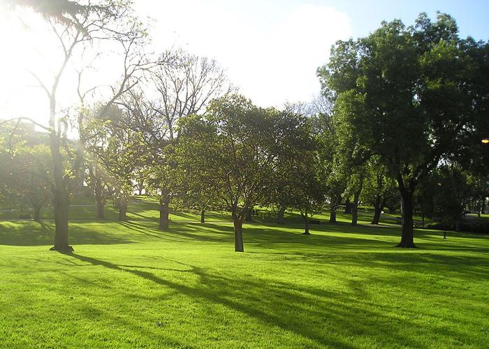 VaporFi Australia -  Best Parks in Melbourne: Flagstaff Gardens